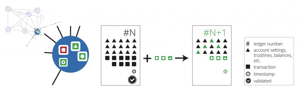 図7: ネットワーク・ノードはレジャー・バリデーションを計算する — 各トラッキングノードは、合意されたトランザクションを最後に検証されたレジャーに適用する。検証ノードは、それらの結果をネットワーク全体に送信する。