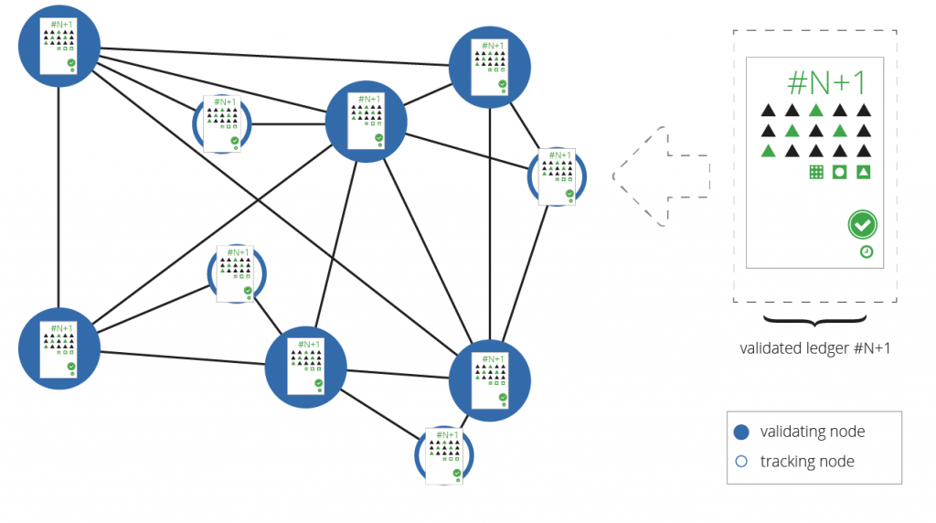 図9: ネットワークは新しい検証されたレジャーを認識する — コンセンサス・プロセスのラウンドの最後に、ノードは更新されたレジャーを持つ。